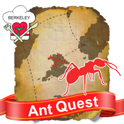 QuestBadges-Ant
